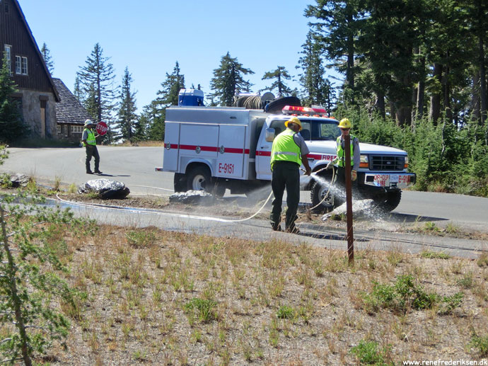 Der var mange skovbrande i området, så brandmændene havde travlt med sikring.