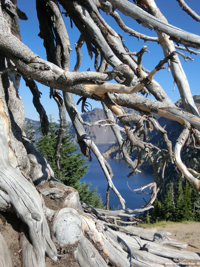 Crater_Lake_Natl_Park_Roadtrip_2012-304