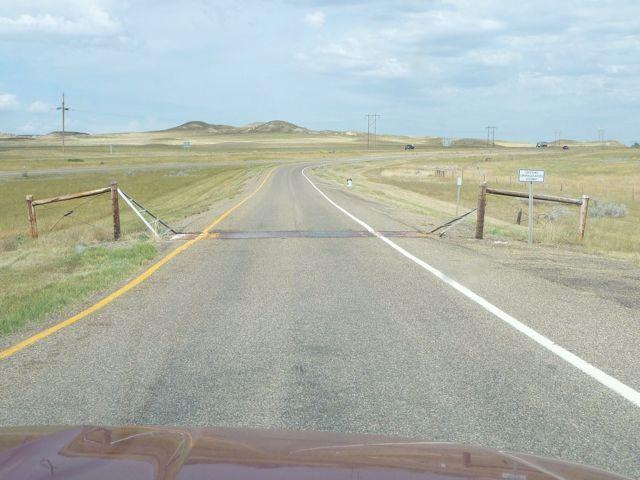 Ingen køer på interstates i Montana