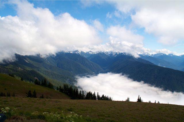 En Olympiske tåge