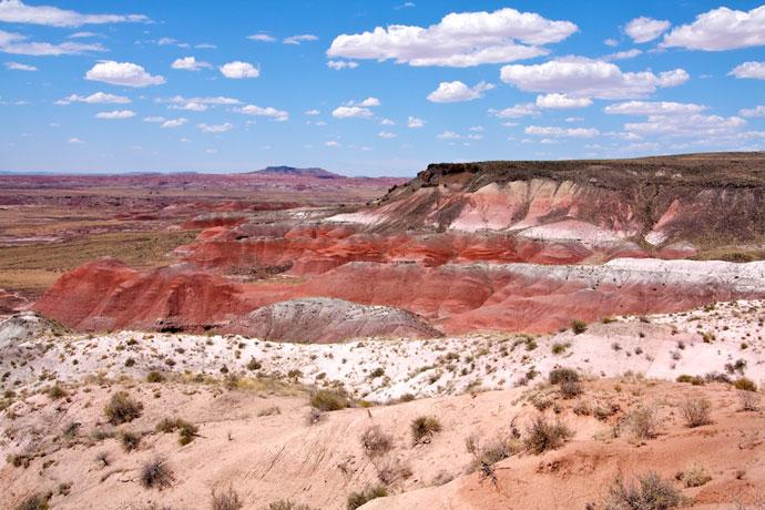 Farverig ørken og forsteninger på Route 66