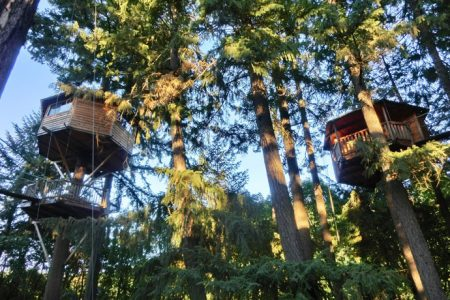 Unik overnatning i trætoppene i Oregon