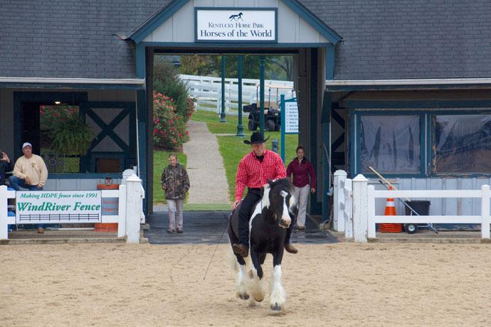 kentucky_horse_park_roadtrip_2013-4