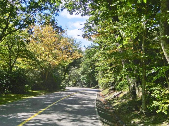 grandfather_mountain_north_carolina_roadtrip_2013-12