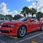 Billeje til krydstogt i Florida