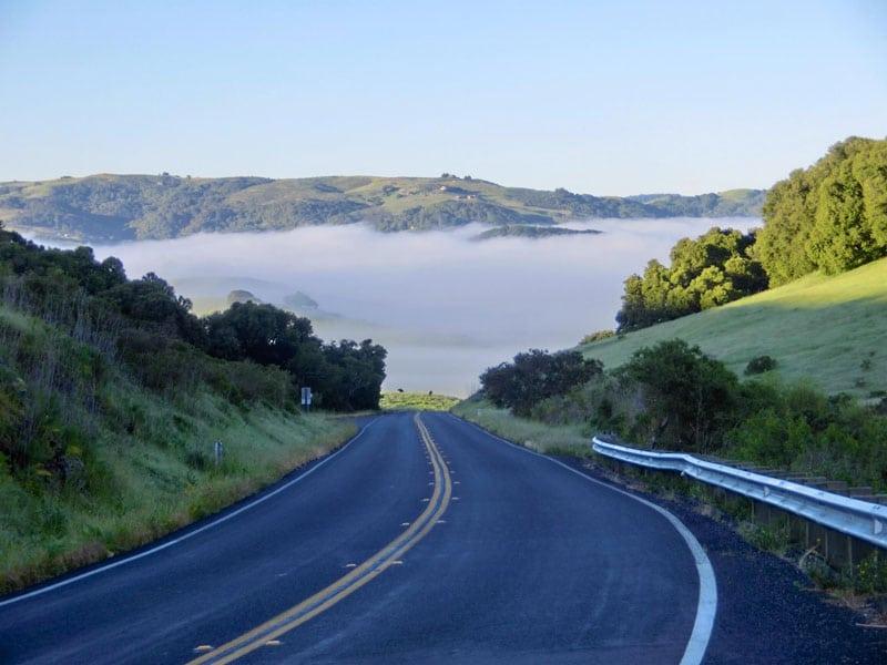 Morgendis ved Santa Rosa