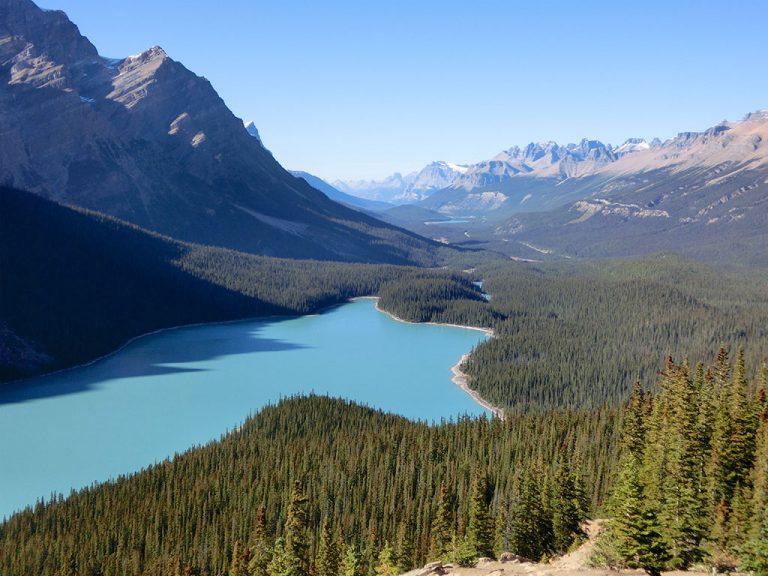 Peyto Lake og postkort på stribe