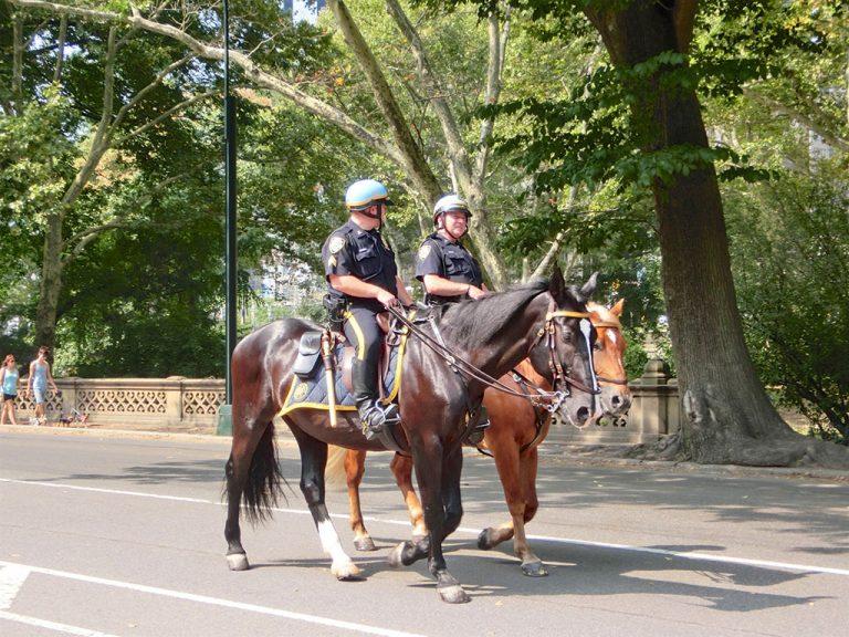 Central Park og Roosevelt Island Tram i New York