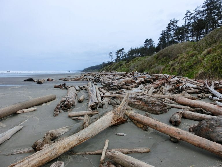 Landlig idyl, Stillehavet og Castle Rock
