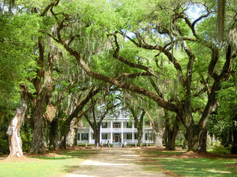 Myrtles og Rosedown Plantation nær New Orleans