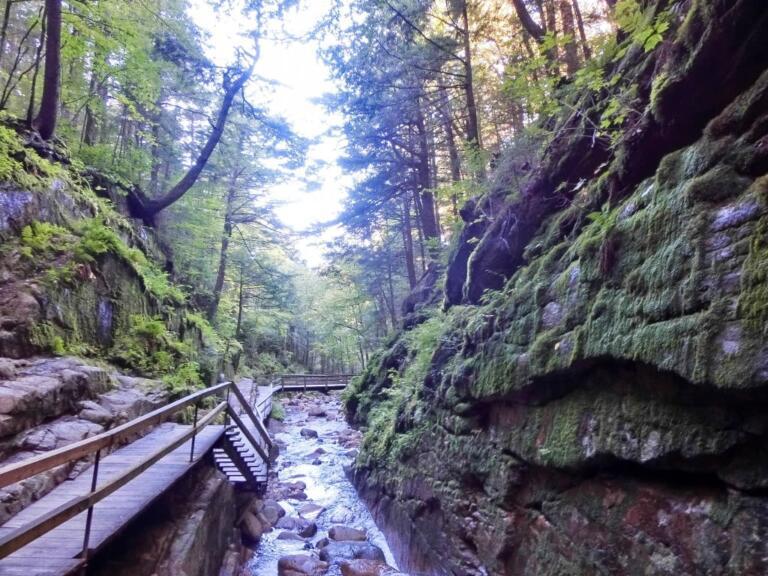 Flume Gorge i New England